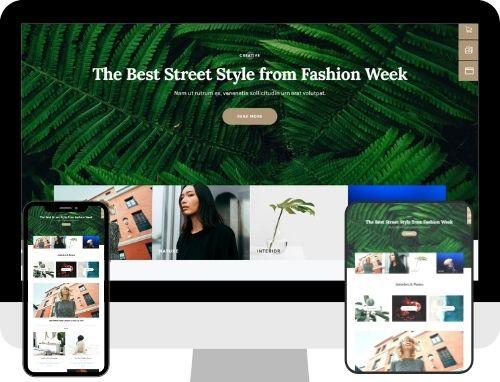 Blog Website The Primay